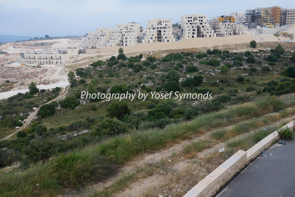 Ramat Beit Shemesh Gimmel: Visions Of Israel