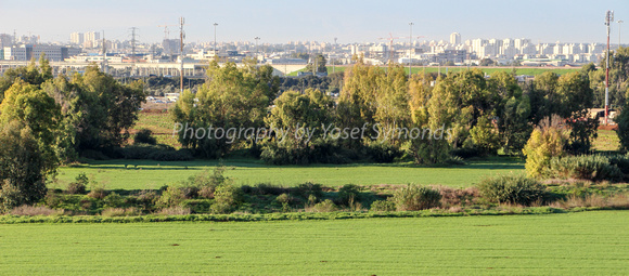 Agricultural Land Opposite Airport City 4
