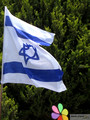 Israel Flag and Child's Wind-Vane